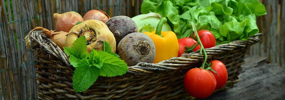 Antioksidanlar ve Otizmde Beslenme