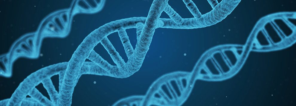 Otizmde Metilasyon ve Nutrigenomik