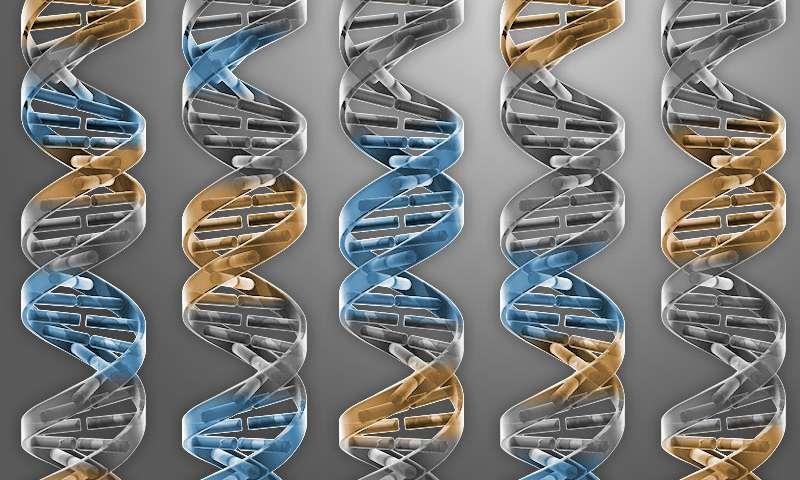 Otizm her iki ebeveynde de olmayan novo mutasyonlardan olabilir