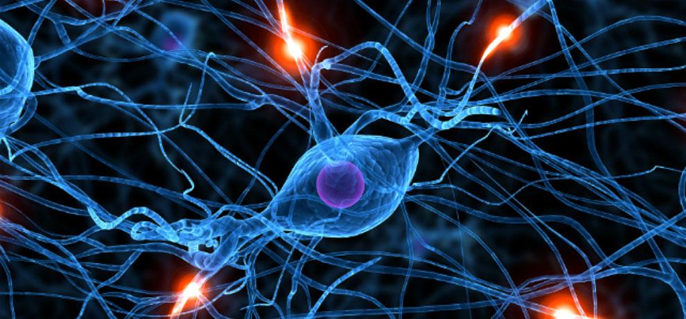 Tourette sendromuna beyin kimyasalı olan GABA yardımcı olabilir.