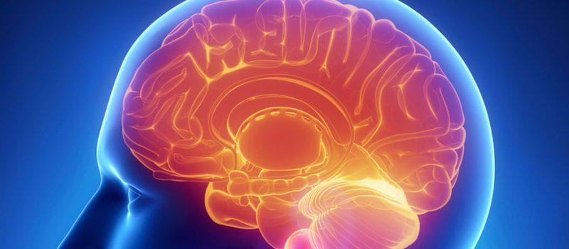 Yeni Buluşla Beyin Nöronlarımızın Genetiği Yeniden Tamir Edilebilecek