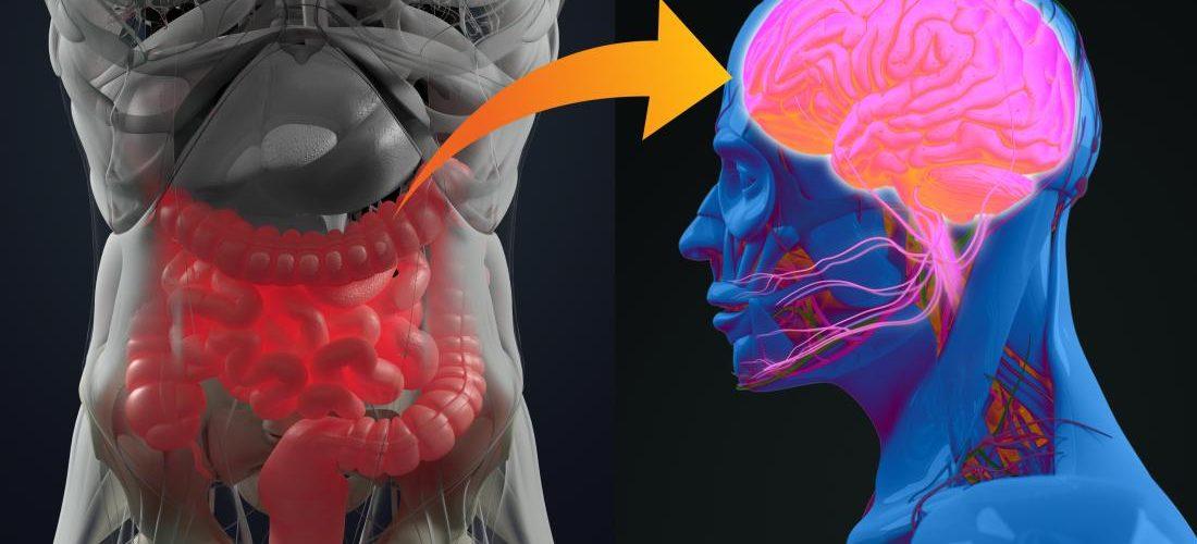 Annenin Mikrobiyomu Otizm Nedenleri Arasında Gösterildi